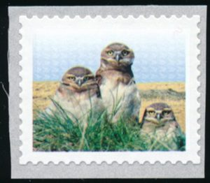 Lot 266, Canada 2014 $1 Burrowing Owl with yellow omitted